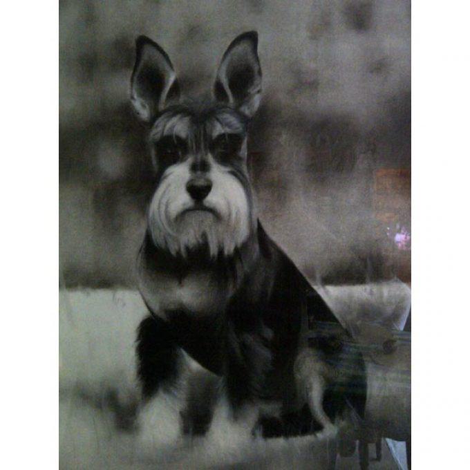 Obraz psa